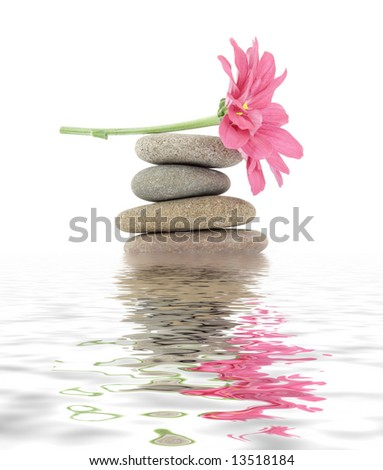 therapeutic zen / spa stones with flowers isolated - stock photo