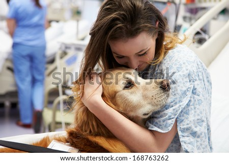 Therapy Dog Visiting Young Female Patient In Hospital - stock photo
