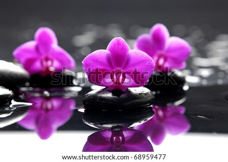 therapy stones with pink orchid on pebble - stock photo