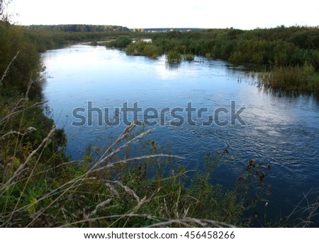There are trees in a summer forest and river - stock photo
