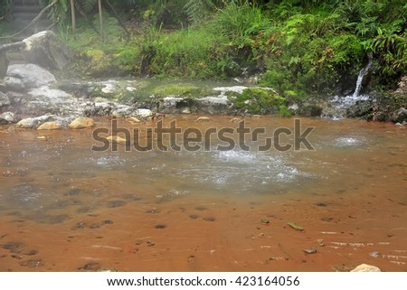 Thermal pool Caldeira Velha, Sao Miguel island on Azores, Portugal