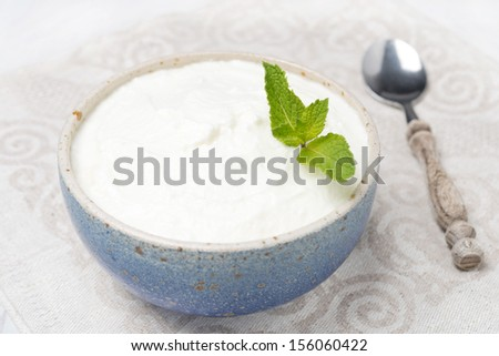 thick homemade yogurt decorated with mint, close-up - stock photo