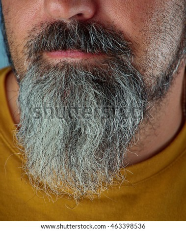 thick white and grey beard, close up