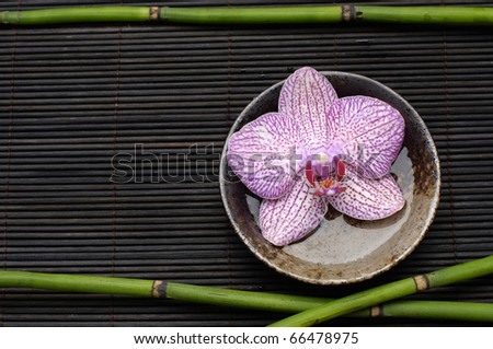 Thin bamboo and bowl of beautiful orchid on mat - stock photo