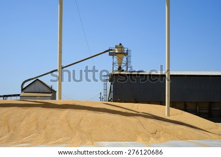 This Central California plant processes animal feed. It is located adjacent to a cattle feed lot. - stock photo