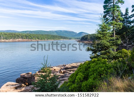 This image shows a beautiful combination of foliage, rocks, water and sky on the shoreline of Acadia National Park. - stock photo