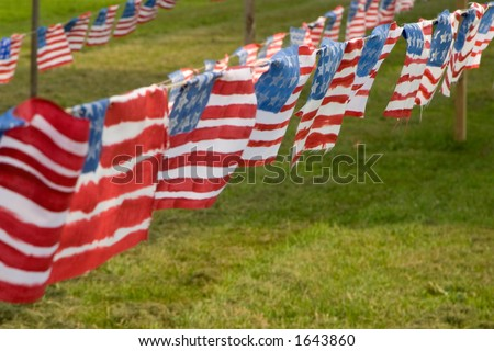 This is a display in Brattleboro Vermont protesting the Iraq war.  Each flag represents a US soldier killed in combat.
