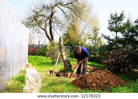 This is a man trying to delve a stump of tree.
