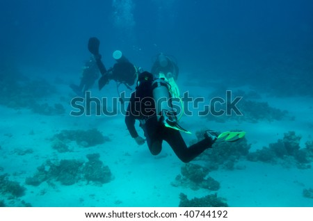 This is an underwater picture of some divers, taken from behind of them in the Red Sea, Egypt