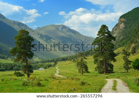 This is green valley in Caucasus mountains in summer - stock photo