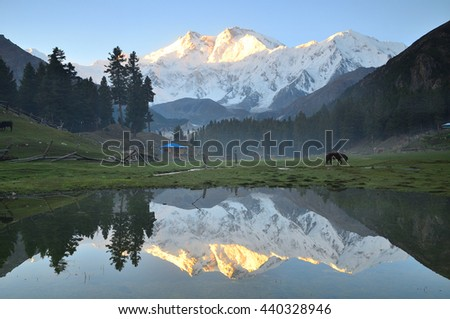 This is reflection of nanga parbat mountain before sunrise at fairy meadows ,north Pakistan  - stock photo