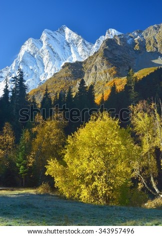 This is sunny morning in Caucasus mountains in autumn