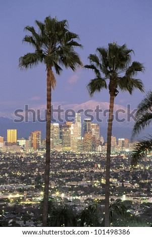 This is the Los Angeles skyline with two palm trees in the winter at dusk. Snowy Mount Baldy is in the background. - stock photo