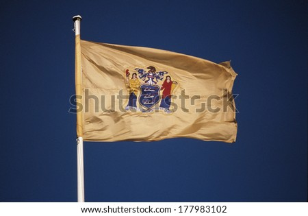 This is the New Jersey State Flag situated on a flagpole, waving in the wind. It's symbol is set against a yellow-gold background.