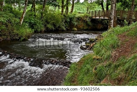 This peaceful stock image invites someone to cross over on the small footbridge over this creek, to cool off on a hot summer day in the wooded cool landscape. - stock photo