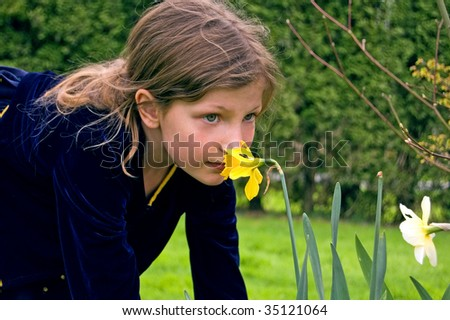 This pretty 8 year old Caucasian girl is smelling a yellow daffodil in her navy blue dress. - stock photo