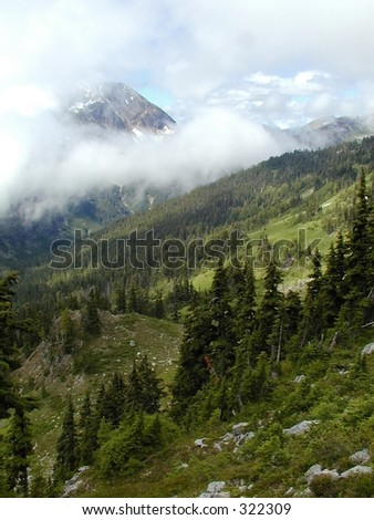 This spectacular view comes from near the summit of La Crosse Pass at about 5000 ft. Photographed at the Olympic National Park, WA. - stock photo