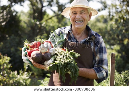 This year is very abundant in crops - stock photo