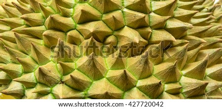 Thorns of durian background - stock photo
