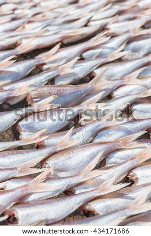 Threadfin fish dry out on sieve. Selective Focus - stock photo