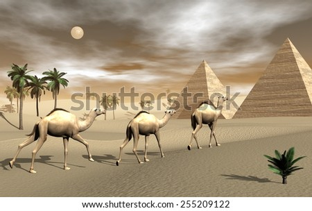 Three camels walking towards pyramids in the desert by brown sunset with full moon - 3D render - stock photo