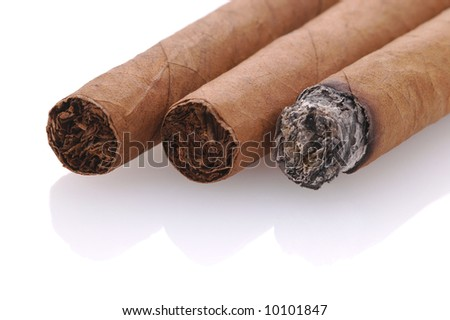 Three cigars 0ne lit isolated on white with reflections - stock photo