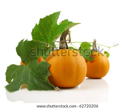 Three colorful mini pumpkins with leaves on a white background - stock photo