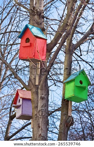 Three colorful wooden bird houses on the tree - stock photo