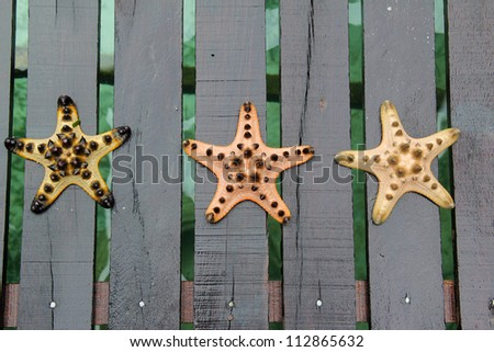 Three different color of starfish - stock photo
