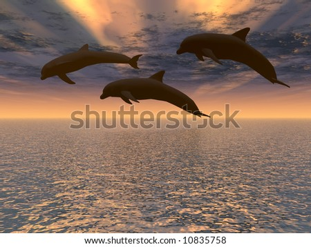 Three dolphins - stock photo