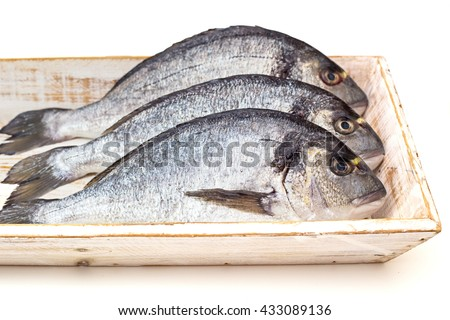 Without scales stock photos images pictures shutterstock for Fish without scales