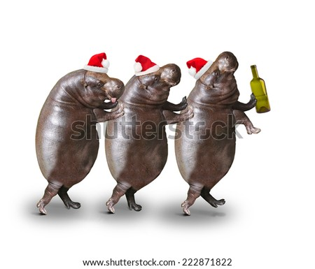 Three drunken hippos going to home from christmas party.  - stock photo