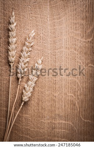 three ears of ripe wheat on wooden background - stock photo
