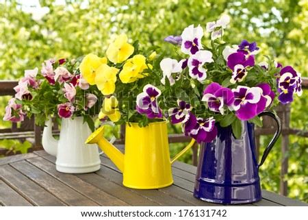 Three enamel jugs with pansy bouquets in different colors, colours - stock photo