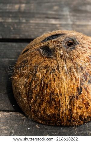 Three Eyes Coconut Empty shell - stock photo