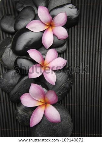 Three frangipani with zen stones on mat - stock photo