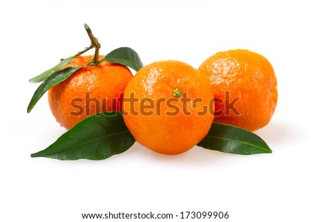 Three fresh mandarin with water drops on a white background - stock photo