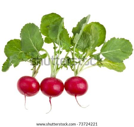 Three Fresh radishes isolated on white background   - stock photo