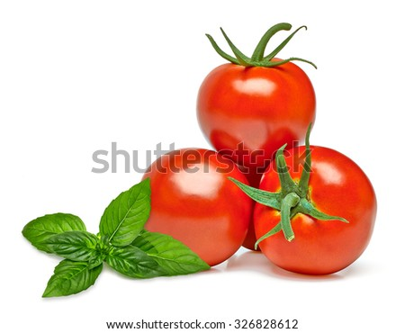 Three fresh tomatoes with green basil sprig leaves isolated on white background - stock photo
