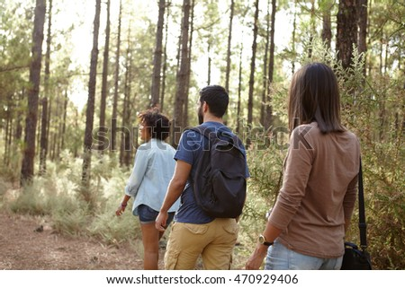 Three friends hiking in a pine forest in the late afternoon sunshine, looking ahead while wearing casual clothing