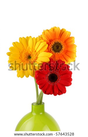 Three Gerbera daisies in vase - stock photo