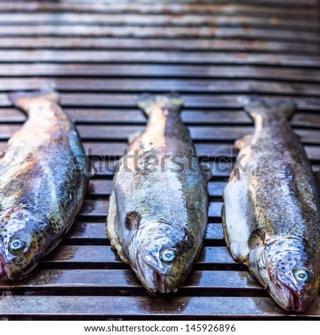 three grilled trout/char on barbecue - stock photo