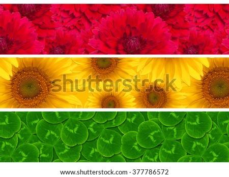 three header site sunflower dahlia flower shamrock clover pattern - stock photo