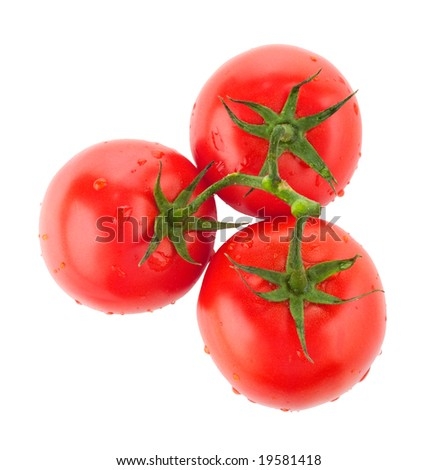 Three juicy, freshly washed vine tomatoes on white background