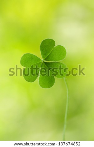 Three leaf clover against green background - stock photo