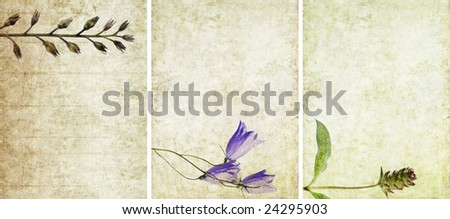 three lovely background textures or banners. very useful design elements.