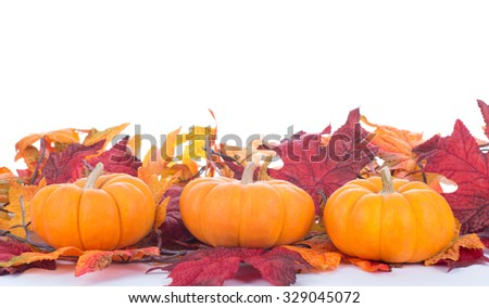 Three mini pumpkins on a white background - stock photo