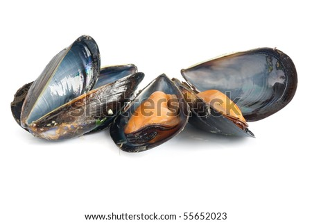 three mussels boiled with garlic isolated on white background - stock photo