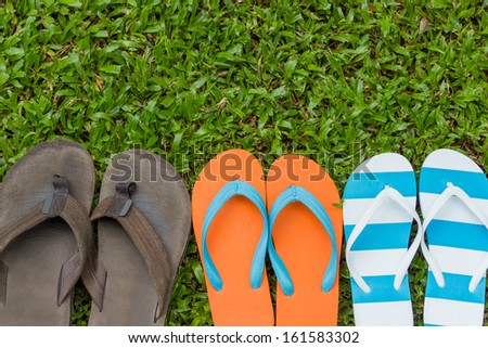 Three pair of flip flops on field grass (Look Like family)