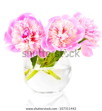 Three pink peonies in vase isolated on white - stock photo